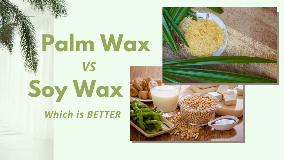 Palm wax vs Soy wax which makes a better candle?